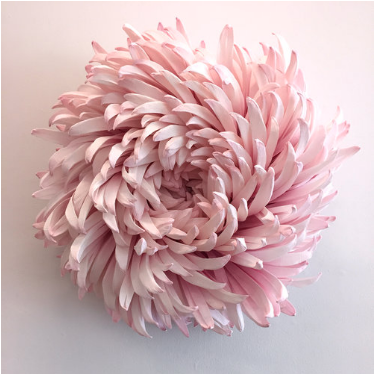 paper flower by Tiffanie Turner
